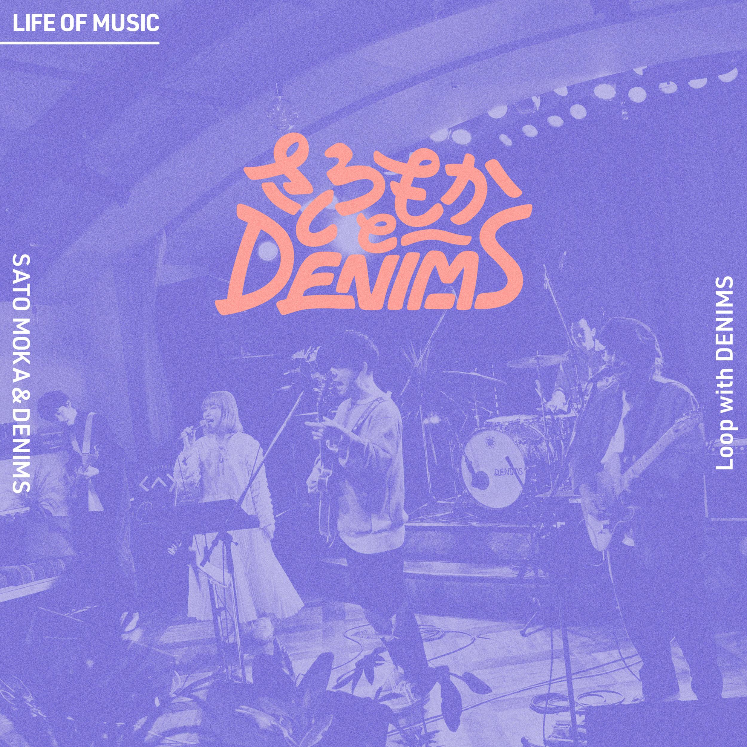 Loop with DENIMS